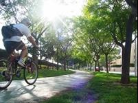 Carril bici Av. Jaume I - 002