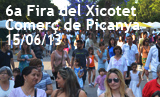 6a Fira del Xicotet Comerç de Picanya - Dissabte 15/06/2013