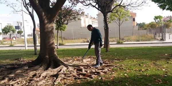 S'incrementen els tractaments de control de plagues per les pluges i la proximitat de les altes temperatures