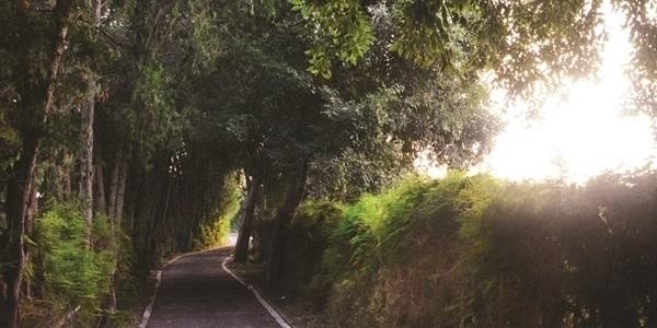 La volta pels Horts, arquitectura singular i paisatge d'horta a un pas de casa